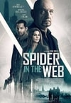 Poster for Spider in the Web